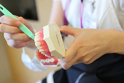 担当の歯科衛生士