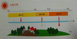 紫外線の種類とその対策について
